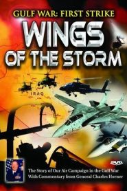 Gulf War: First Strike – Wings Of The Storm